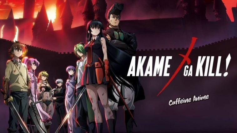 akame ga kill top anime like goblin slayer
